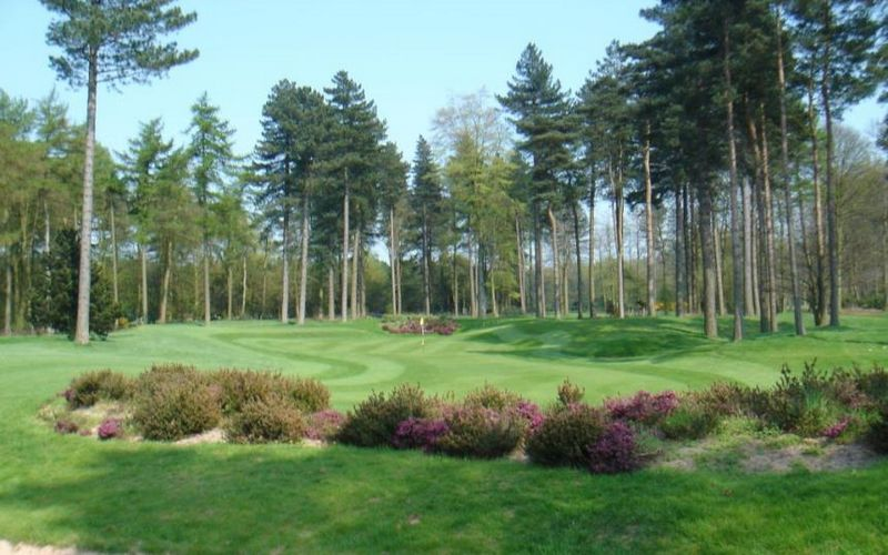 Forest Pines Golf Resort Forest Pines Golf Breaks