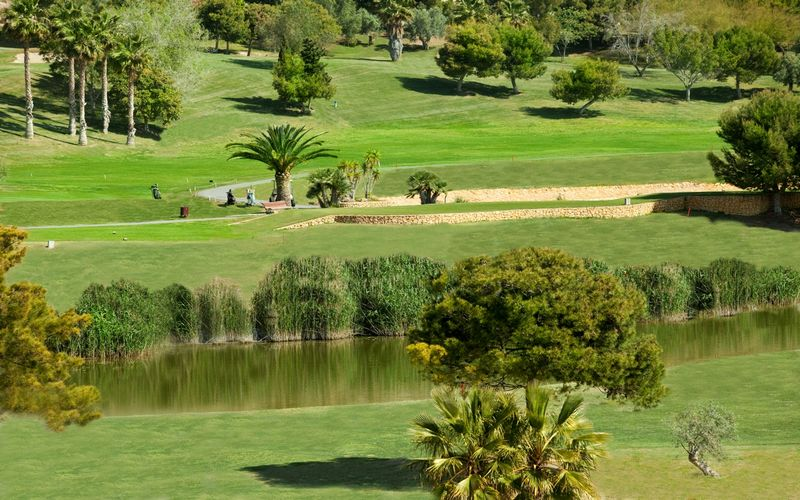 Hotel Bonalba Golf Resort Alicante